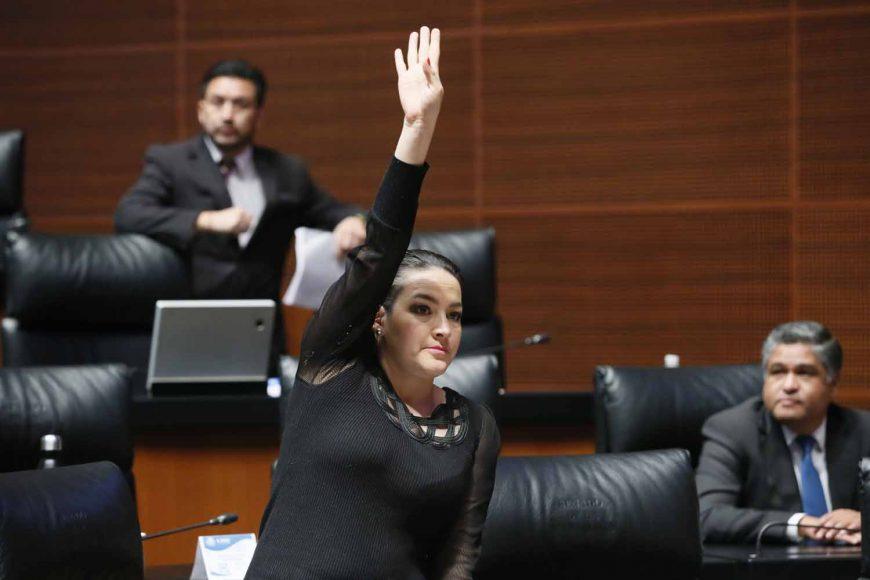 Senadora Martha Márquez Alvarado, al intervenir desde su escaño.