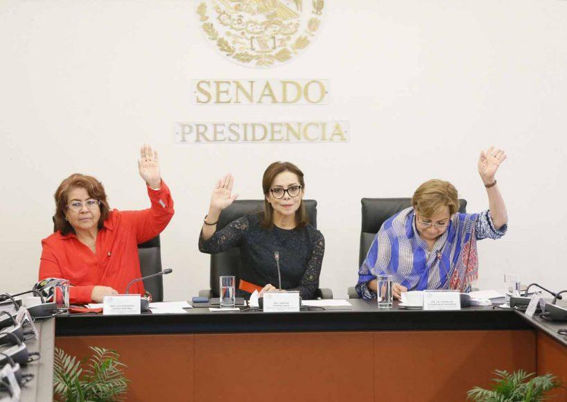 Intervención de la senadora Josefina Vázquez Mota durante la instalación de la Subcomisión de Estancias Infantiles.