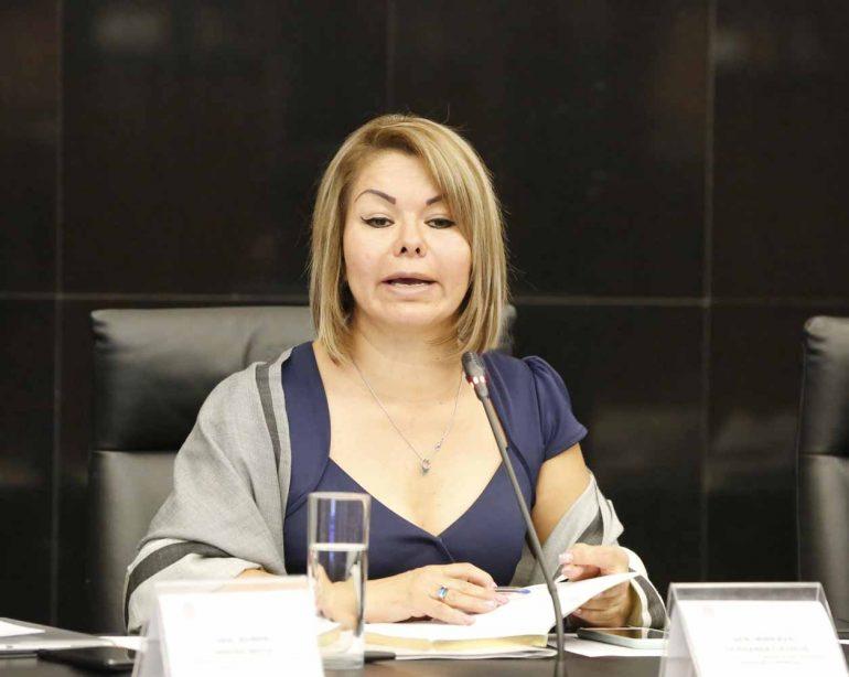 Propone Minerva Hernández Ramos regular a las empresas de ...