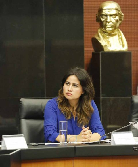 Senadora Indira Rosales San Román durante la reunión de trabajo de las comisiones unidas de Puntos Constitucionales, Educación y Estudios Legislativos.