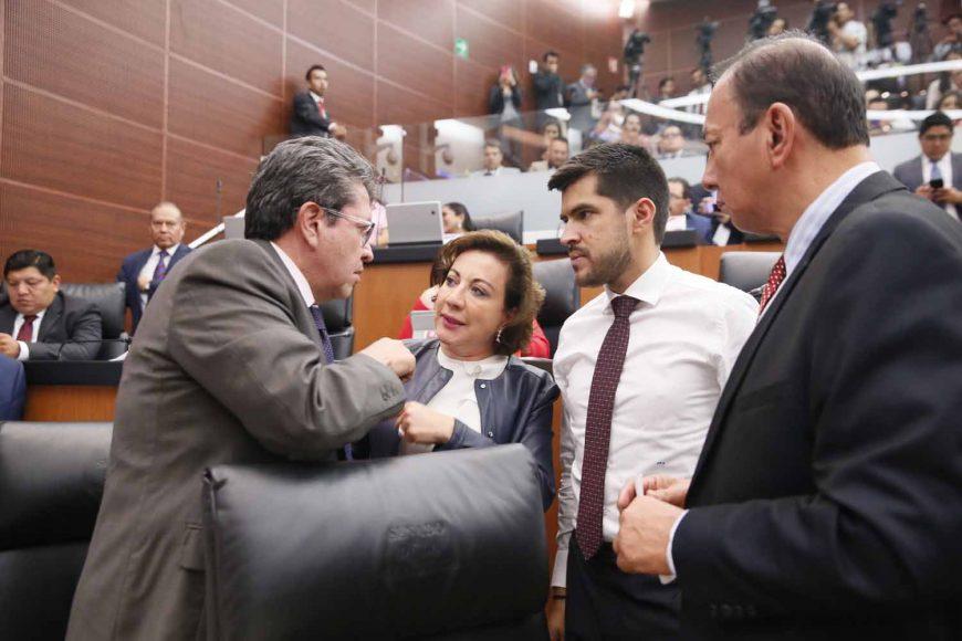 Senadora Guadalupe Murguía