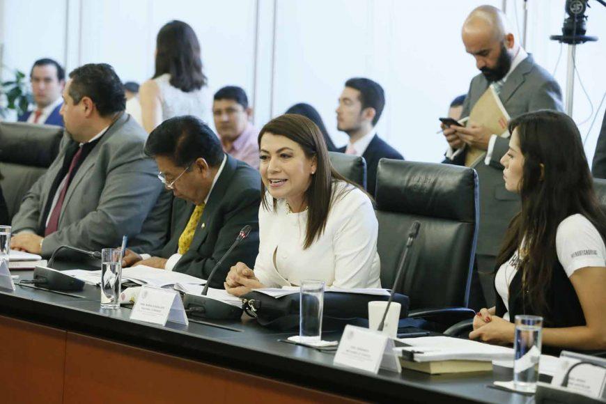 Intervención de la senadora Guadalupe Saldaña Cisneros durante la reunión de trabajo de comisiones unidas de Puntos Constitucionales, Educación y de Estudios Legislativos Segunda.