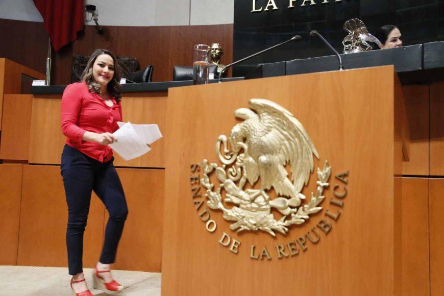 Senadora Martha Márquez Alvarado, en la discusión de un dictamen en materia de igualdad de género