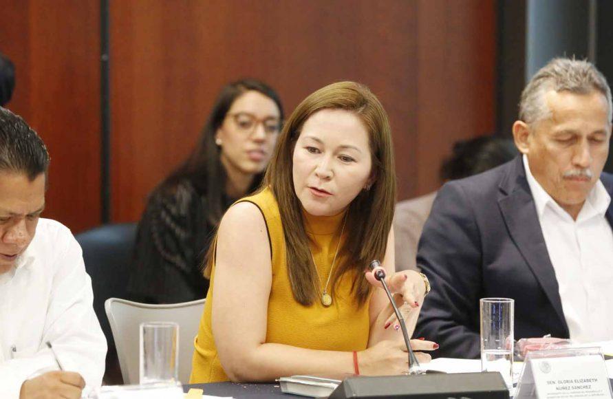Senadora Gloria Núñez Sánchez, durante la reunión de la Comisión de Desarrollo y Bienestar Social.