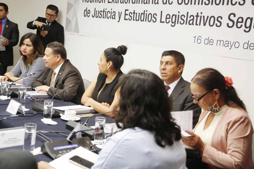 Senadora NadiaNavarro Acevedo en la reunión extraordinaria de la Comisión de Justicia.