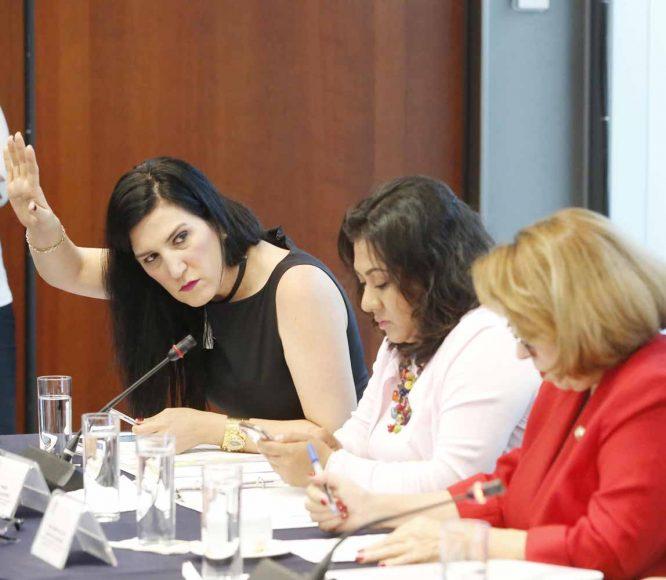 Comisión de Igualdad de Género.