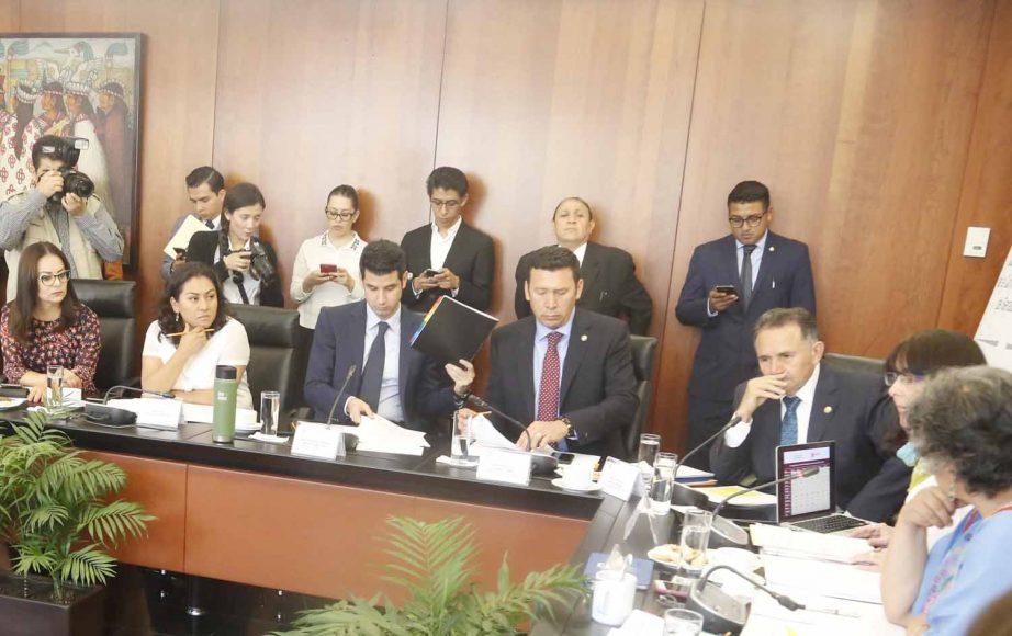 La senadora del PAN, Nadia Navarro Acevedo, durante la comparecencia del titular de CONACYT María Elena Álvarez-Buylla ante la Comisión de Ciencia y Tecnología.