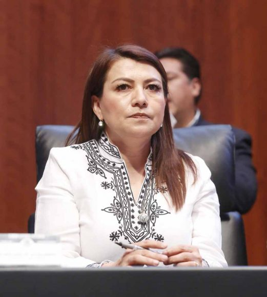 Senadora Guadalupe Saldaña en sesión de la Comisión Permanente.