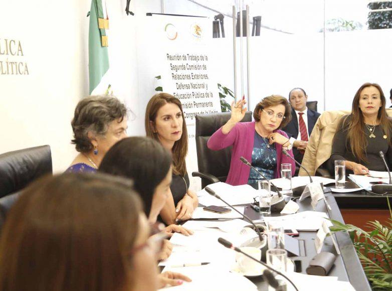 Senadora Guadalupe Murguía Gutiérrez, durante la reunión de trabajo de la 2da. Comisión de Relaciones Exteriores.Guadalupe Murguía Gutiérrez, durante la reunión de trabajo de la 2da. Comisión de Relaciones Exteriores.