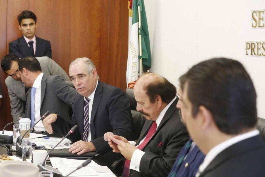 Senador Julen Rementería del Puerto, en reunión de la Comisión de Energía