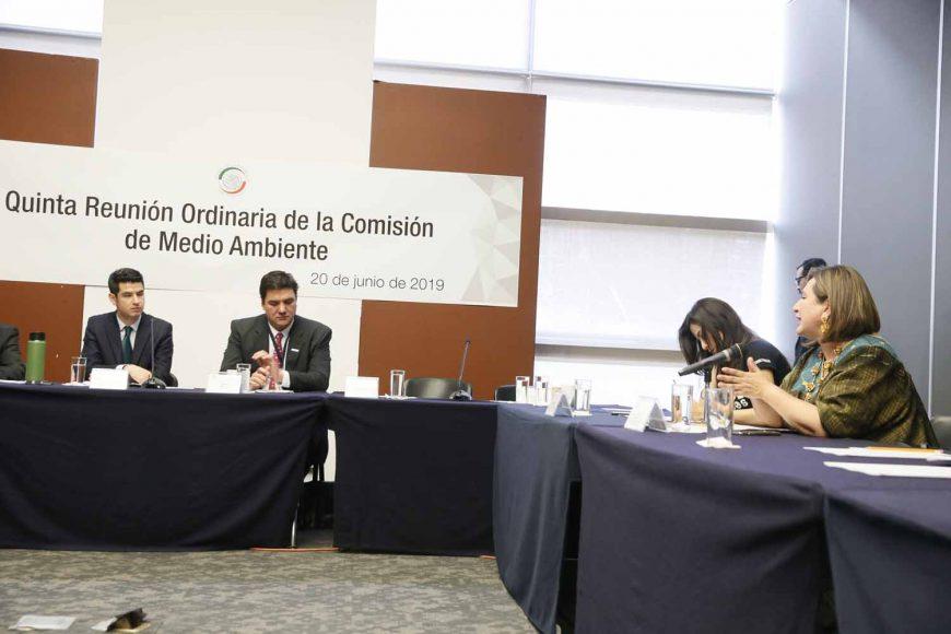 Senadora Xóchitl Gálvez al intervenir en reunión de la Comisión de Medio Ambiente y Cambio Climático