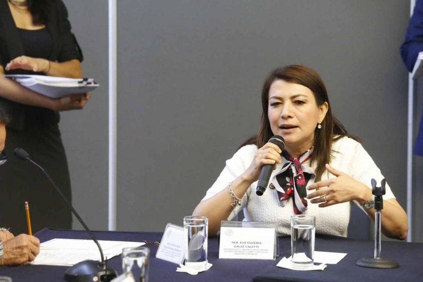 Intervención de la senadora Guadalupe Saldaña en Comisión de Medio Ambiente y Cambio Climático