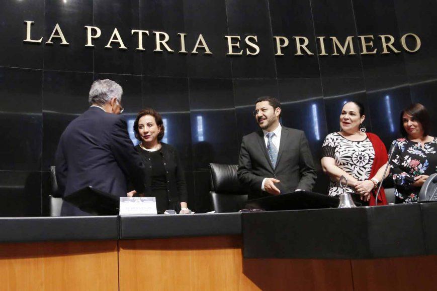 Senadora Guadalupe Murguía Gutiérrez, durante la sesión extraordinaria