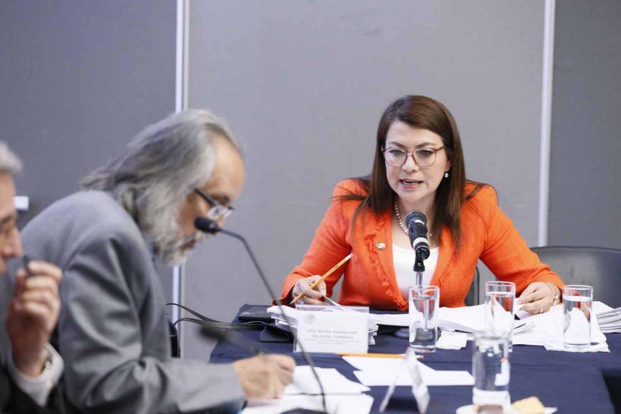 Intervenciones de la senadora Guadalupe Saldaña, durante las entrevistas de las y los candidatos a la Junta Directiva del Organismo para la Mejora Continua de la Educación, ante la Comisión de Educación.