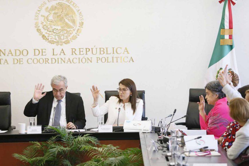 Intervención de la senadora Guadalupe Saldaña Cisneros, en la reunión extraordinaria de la Comisión de Educación.