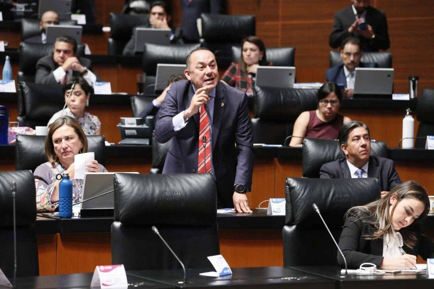 Senador Erandi Bermúdez Méndez, al intervenir desde su escaño.