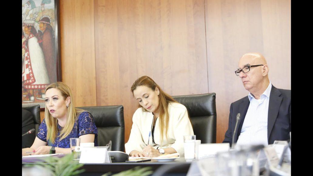 """Senadora Alejandra Reynoso Sánchez, durante la reunión con el Consejo Consultivo Nacional """"Pensando en México"""""""