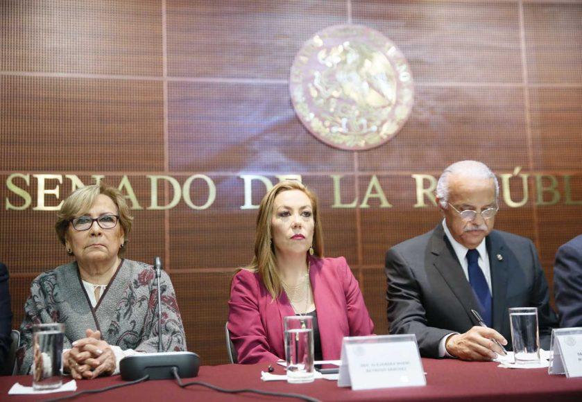 """Sen. Alejandra Noemí Reynoso al Interervenir en Audiencia Pública  del Parlamento Abierto en materia de: """"Etiquetado Frontal Nutrimental y Elección de una dieta Saludable"""
