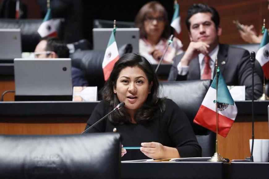 Senadora Nadia Navarro Acevedo al intervenir desde su escaño