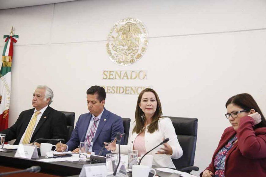 Pregunta de la senadora Gloria Elizabeth Núñez Sánchez a Miguel Torruco Marqués, secretario de Turismo, en la comparecencia del funcionario federal ante la Comisión de Turismo.
