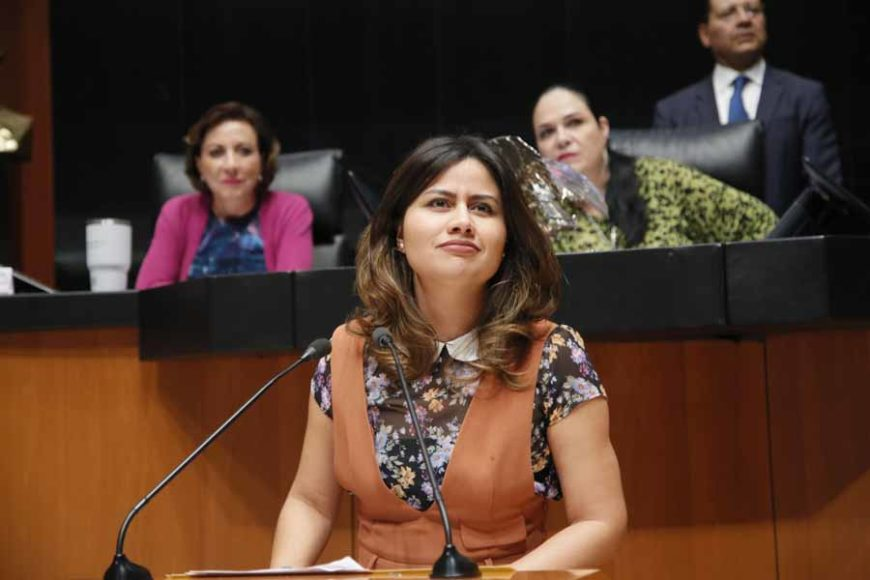 Senadora Indira Rosales San Román, al participar en la discusión de un dictamen de las comisiones unidas de Educación y de Estudios Legislativos Segunda