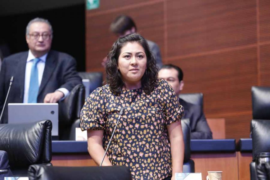 Intervención, desde su escaño, de la senadora Nadia Navarro Acevedo para referirse a las declaraciones del gobernador de Puebla, Miguel Barbosa Huerta.