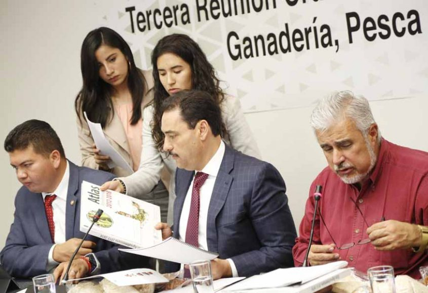 La senadora Guadalupe Saldaña Cisneros y el senador Juan Antonio Martín del Campo, durante la reunión de la Comisión de Agricultura, Ganadería, Pesca y Desarrollo Rural.