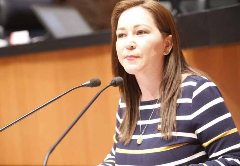 Intervención de la senadora Gloria Elizabeth Núñez Sánchez, al presentar reservas a un dictamen de las comisiones unidas de Salud y de Estudios Legislativos Segunda, por el que se reforman diversas disposiciones de la Ley General de Salud y de la Ley de los Institutos Nacionales de Salud, en materia de creación del Instituto de Salud para el Bienestar.