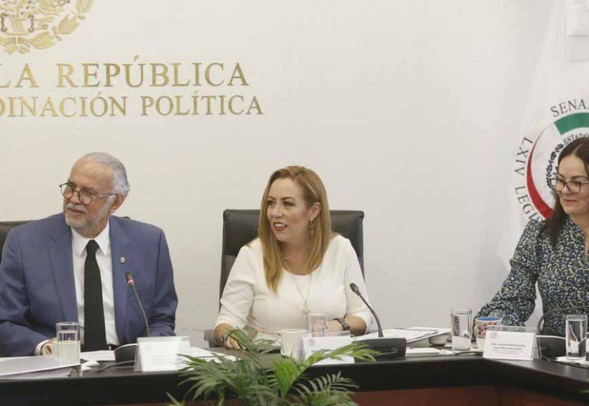 Senadora Alejandra Reynoso Sánchez, durante su participación en la Comisión de Salud