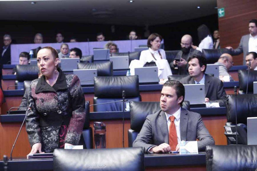 intervención, desde su escaño, de la senadora Alejandra Reynoso Sánchez para referirse al protocolo modificatorio del T-MEC