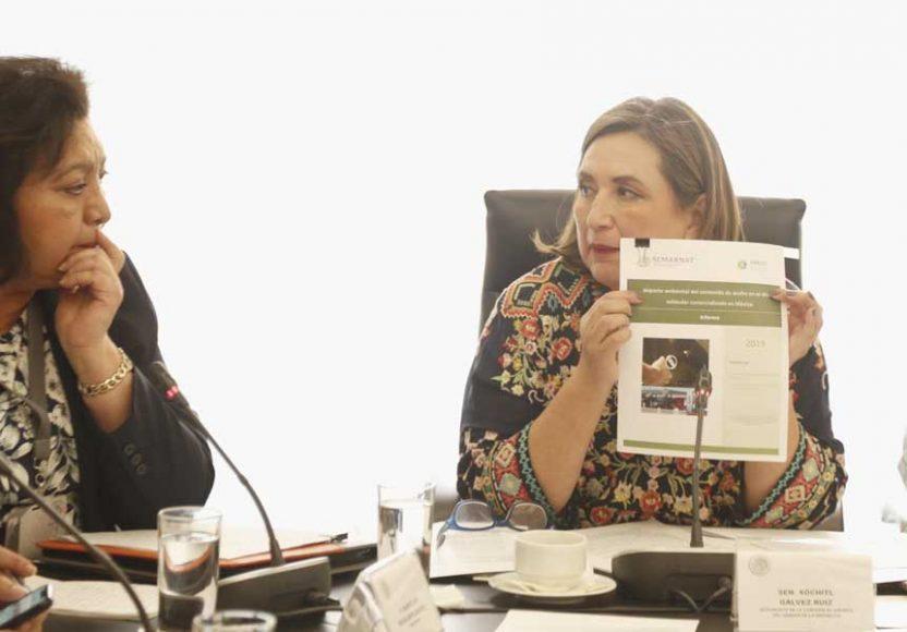 Pregunta de la senadora Xóchitl Gálvez Ruiz a Guadalupe Escalante Benítez, durante su comparecencia ante la Comisión de Energía para el cargo de comisionada de la Comisión Reguladora de Energía.