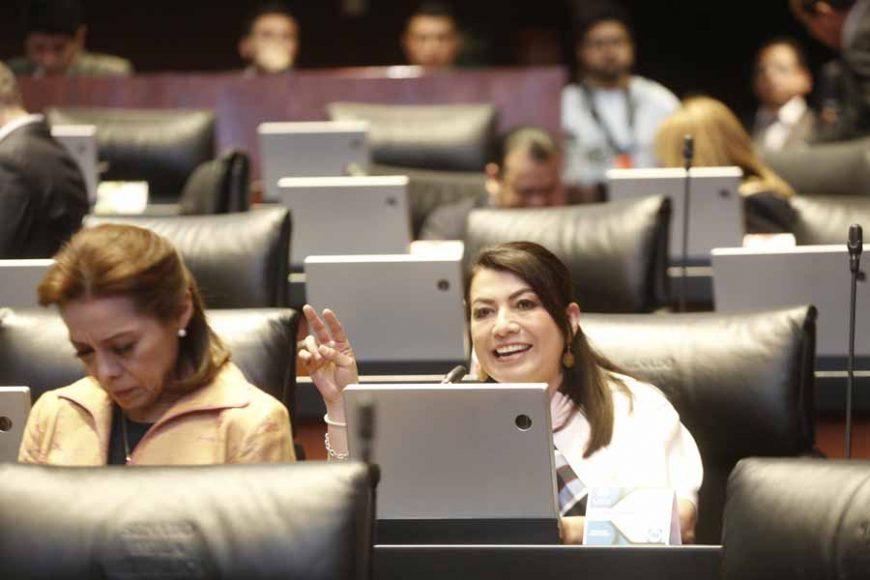 Intervención desde su escaño de la senadora Guadalupe Saldaña Cisneros sobre un punto de acuerdo referente a apagones en Baja California Sur.