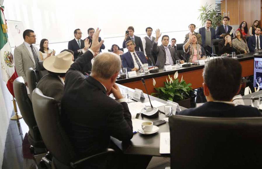 Intervención senador Julen Rementería del Puerto para referirse al dictamen para la ratificación de María Vargas Suárez como comisionada independiente de la CFE.