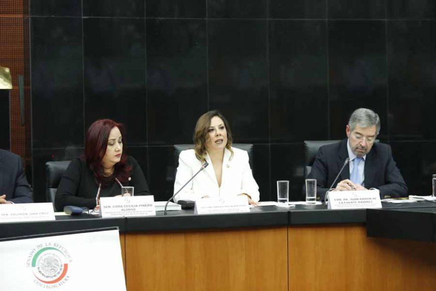 Intervención de la senadora Gina Andrea Cruz Blackledge en la reunión de trabajo en Comisiones Unidas de Relaciones Exteriores con el Embajador Doctor Juan Ramón de la Fuente Ramírez, representante Permanente de México ante la ONU.
