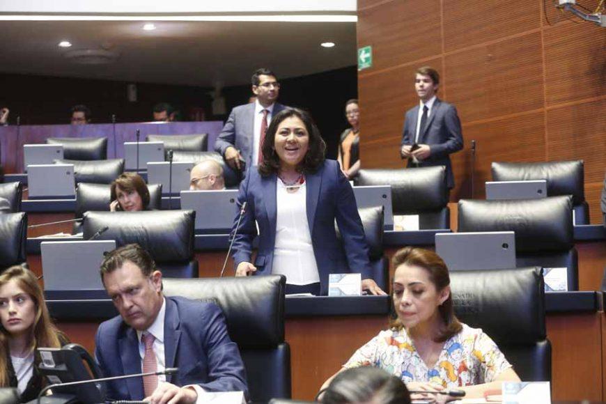 Senadora Nadia Navarro Acevedo, desde su escaño, al referirse a las marchas estudiantiles en Puebla
