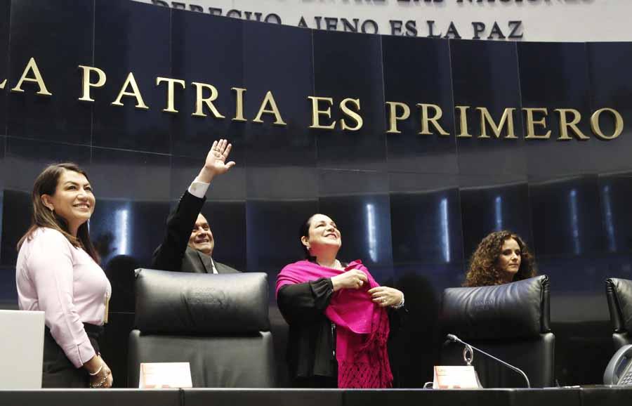 La senadora Guadalupe Saldaña Cisneros, durante la comparecencia de funcionarios del INAI