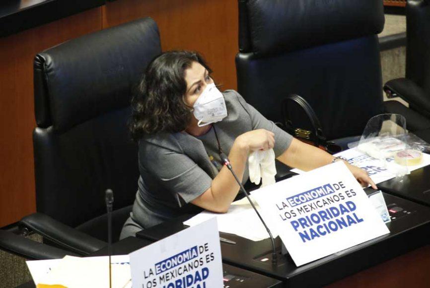 Senadora Nadia Navarro Acevedo para referirse al procedimiento por el cual se convocó a reunión de trabajo a la Comisión de Gobernación.