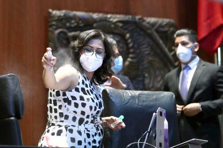 Senadora Nadia Navarro Acevedo durante la sesión de la Comisión Permanente