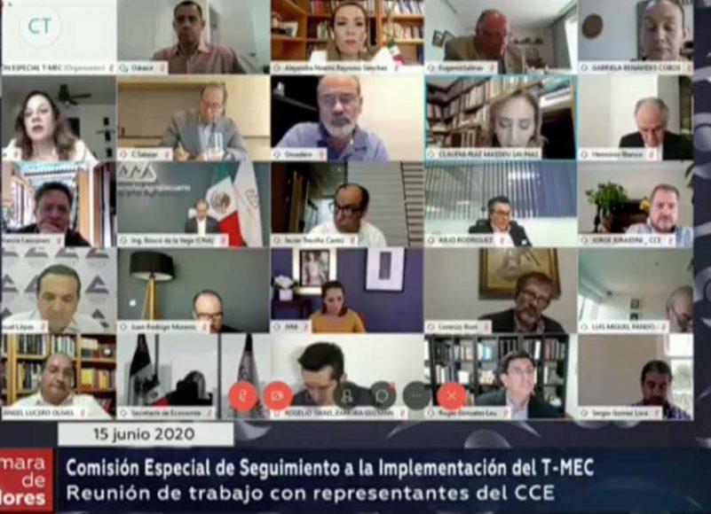 Senadores se reúnen a distancia con el CCE para analizar la implementación del #TMEC