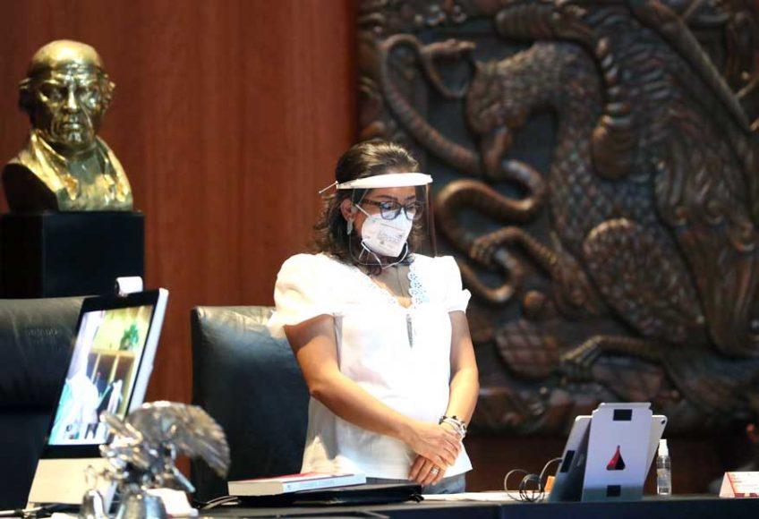 Senadora Nada Navarro Acevedo, durante la sesión ordinaria, de la Comisión Permanente
