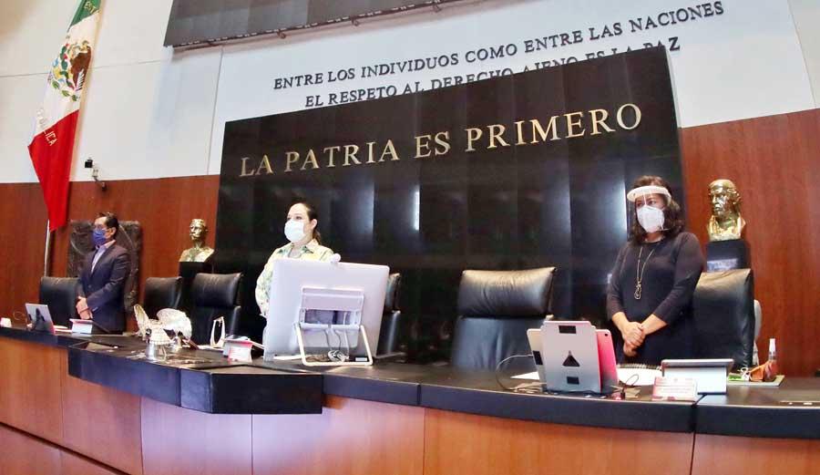 Senadora Nadia Navarro Acevedo, durante la sesión de la Comisión Permanente