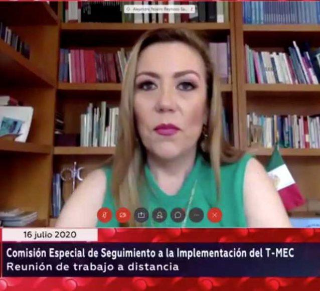 Sen. Alejandra Reynoso, durante la Comisión Especial de Seguimiento a la Implementación del T-MEC