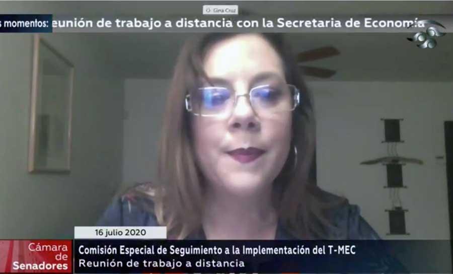 Sen. Gina Cruz al intervenir en la Comisión Especial de Seguimiento a la Implementación del T-MEC