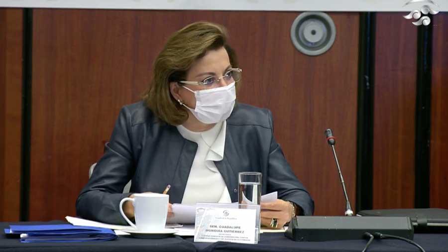 La senadora Guadalupe Murguía Gutiérrez y el senador Julen Rementería del Puerto, durante su participación en la reunión de la Primera Comisión, Gobernación, Puntos Constitucionales y de Justicia.