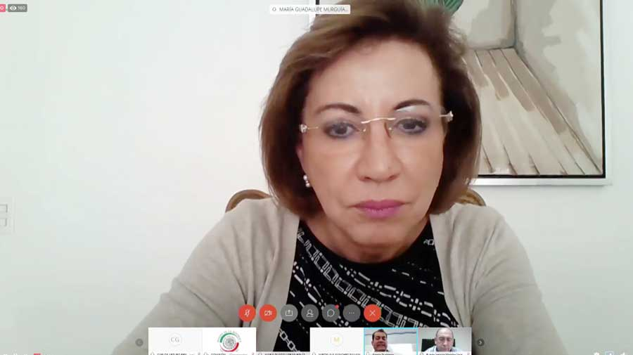 Intervención de la senadora Guadalupe Murguía Gutiérrez, para referirse a los trabajos realizados durante la Comisión Permanente.
