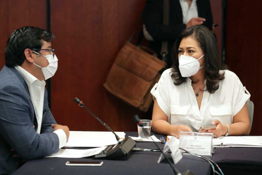 Senadora Nadia Navarro Acevedo, durante la reunión de la Segunda Comisión de la Permanente.