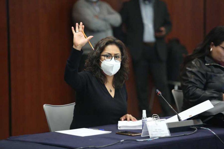 Intervención de la senadora Nadia Navarro Acevedo durante la segunda reunión de la Segunda Comisión: Relaciones Exteriores, Defensa Nacional y Educación de la Comisión Permanente.