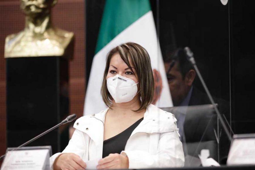 Participación de la senadora Minerva Hernández Ramos, en el encuentro de los sectores productivos del país con la Comisión de Hacienda y Crédito Público del Senado de la República.