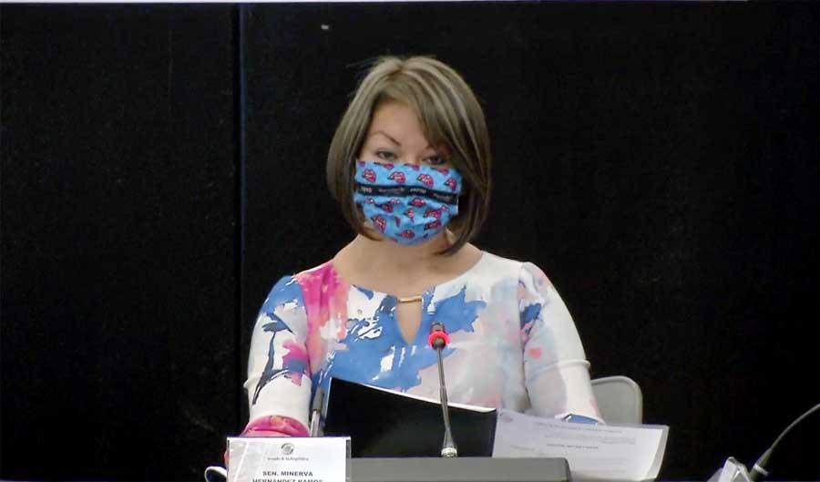 Intervenciones de la senadora Minerva Hernández Ramos, durante la reunión de la Comisión de Hacienda y Crédito Público.