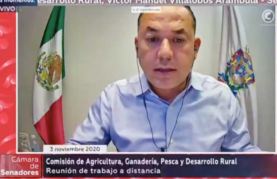 Intervención del senador Erandi Bermúdez Méndez durante la comparecencia de Víctor Manuel Villalobos Arámbula, secretario de Agricultura y Desarrollo Rural, ante la Comisión de Agricultura, Ganadería Pesca y Desarrollo Rural.